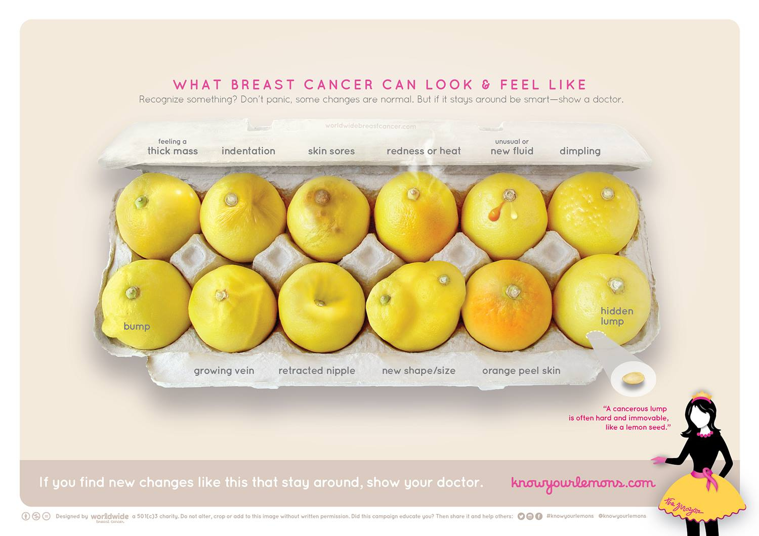 Image showing what breast cancer can look like as imagined using lemons