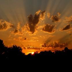 Image showing orange sunset
