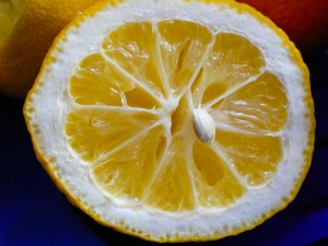 Image showing a squeezed lemon